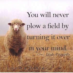 You-will-never-plow-a-field